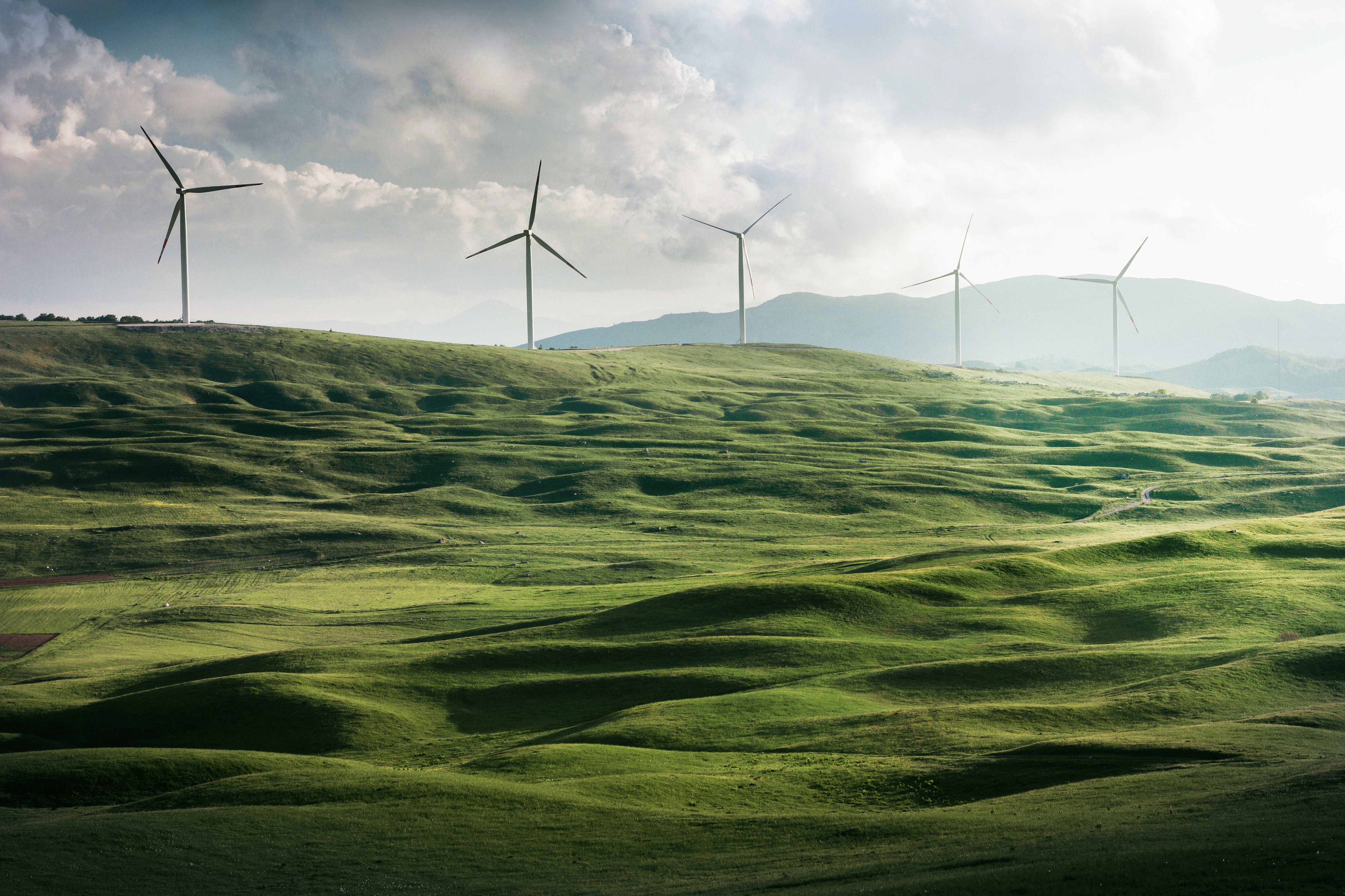 Tax relief for green businesses